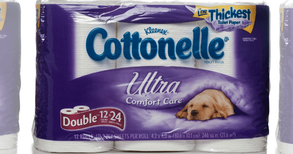 photograph relating to Cottonelle Coupons Printable named Cottonelle Discount codes - Conserve upon Tub Tissue, Wipes Much more