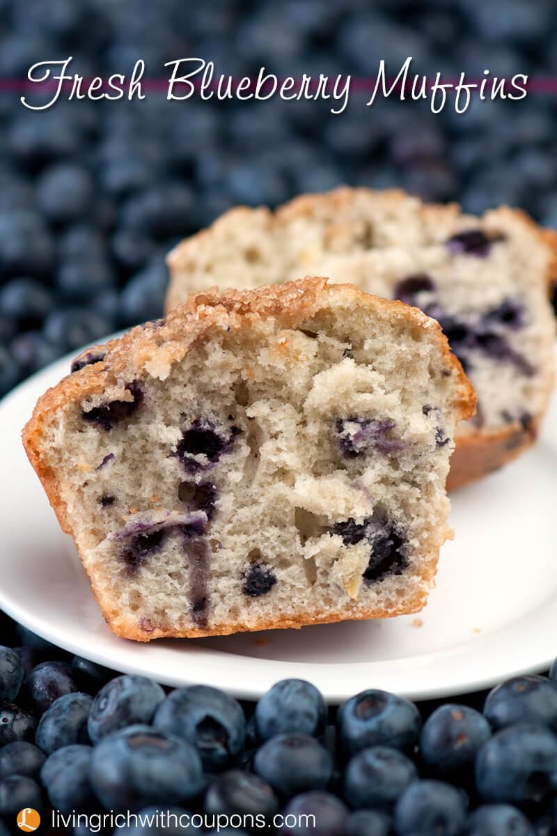 Fresh Blueberry Muffins v copy