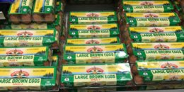 Land O Lakes Eggs Just $0.77 at ShopRite!