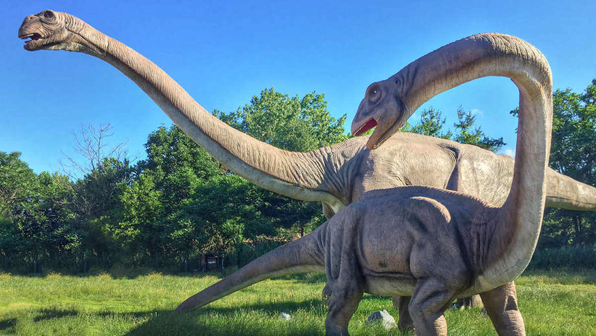 Field Station: Dinosaurs -- Half Off!Living Rich With Coupons®