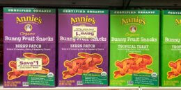 Annie's Fruit Snacks just $1.35 each at Stop & Shop