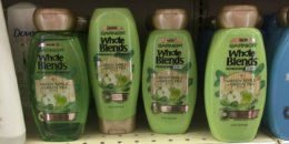 New $2/1 Garnier Whole Blends Hair Care Coupon - Better Than FREE at ShopRite + More Deals!