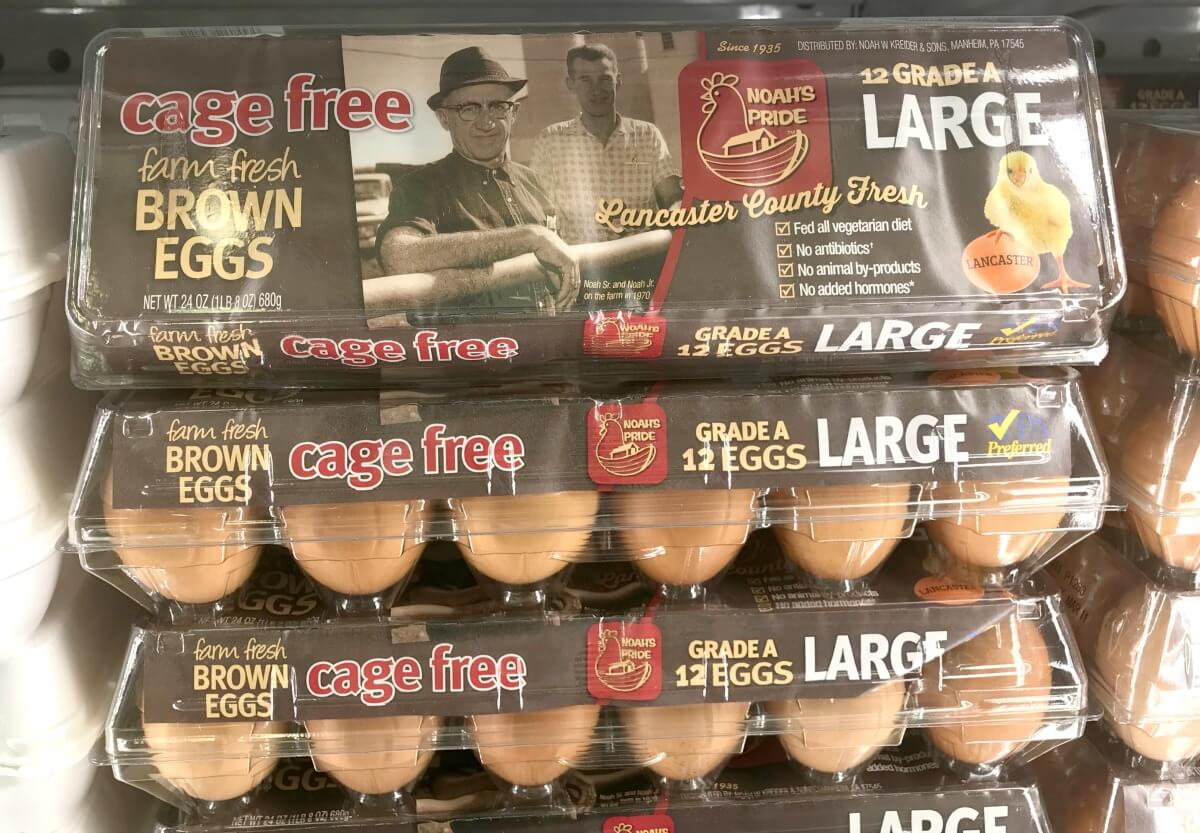 Noah S Pride Cage Free Eggs Just 0 99 At Shoprite 3 4