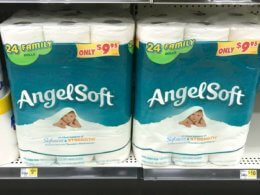 Angel Soft Bath Tissue Just $0.38 per Family Roll at Dollar General!