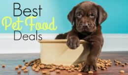 Best Pet Food Product Deals – Week of 5/19/19