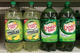 Canada Dry, Dr. Pepper, A&W or 7UP 2 Liters Just $1 at Dollar General! {No Coupon Needed}