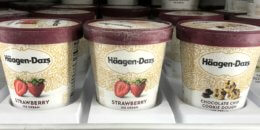 Haagen Dazs Ice Cream as Low as $0.66 at ShopRite!