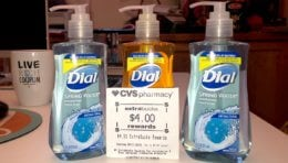 Dial Hand Soap Only $0.56 CVS! {No Coupons Needed}
