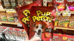 New $1/2 Pup-Peroni Dog Treats Coupon & Deals!