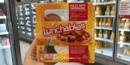 Oscar Mayer Lunchables Just $1 at Target! {No Coupons Needed}