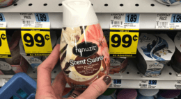 Renuzit Adjustables Air Fresheners Just $0.66 at Rite Aid!