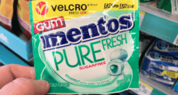 FREE Mentos Velcro Pack Gum at Walgreens! {10/21 - No Coupons Needed}