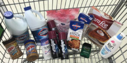 Barb's ShopRite Shopping Trip:  Saved over 91%, just $0.23 per item!