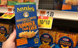 Back Again! FREE Annie's Mac & Cheese at Stop & Shop, Giant, and Giant/Martin