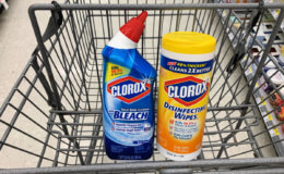 Clorox Bowl Cleaner,  Disinfecting Wipes & More  Just $0.16  at ShopRite {6/23}