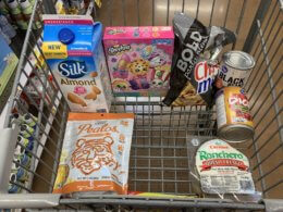 Amanda's Kroger Shopping Trip - Just $4.83 (Over 77% OFF Regular Price)