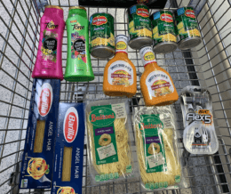 Publix Shopping Trip – 13 Items for $5.06