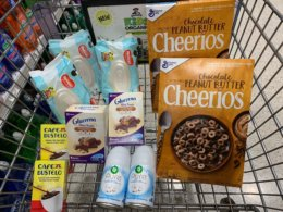 Publix Shopping Trip – 11 Items for $8.54