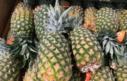 Score a Golden Pineapple for just $0.99 at Stop & Shop {Digital Offer}