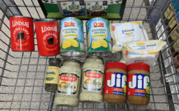 Publix Shopping Trip – 10 Items for $4.96