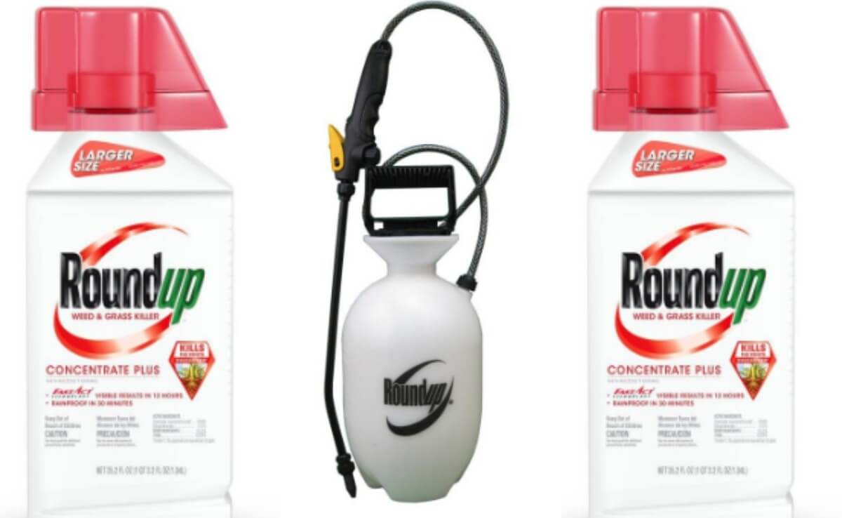 Buy Roundup Plus 35 2-oz Concentrate Weed & Grass Killer Get