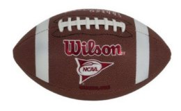 Wilson NCAA Red Zone Series Official Size Composite Football Only $9.99 (Reg. $20.99) at Walmart