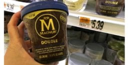 Magnum Ice cream Tubs Just Just $1.08 at ShopRite!