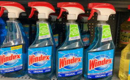 New $1/1 Windex Products Coupon + Deals at Target, ShopRite & More!
