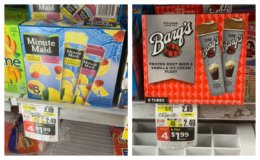 Minute Maid, Barqs & Whole Fruit Frozen Novelties as Low as $0.74  at ShopRite! {Rebate}