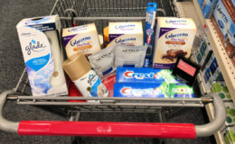 Nanci's CVS Shopping Trip - $4.84 {Over $56 Savings!}