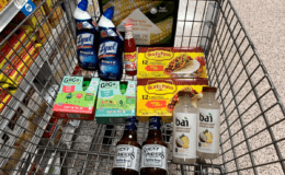 Publix Shopping Trip – 11 Items for $5.42
