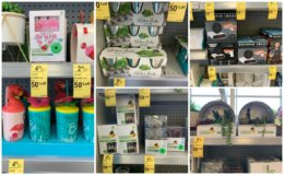 HOT! 90% off Summer Clearance at Walgreens!