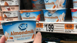 Silk Dairy Free Yogurt Cups just $0.25 at Stop & Shop  {6/05}