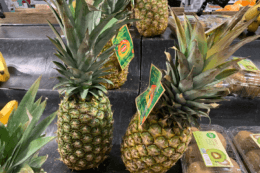 Acme Shoppers - $0.48 Golden Ripe Whole Pineapples!