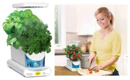 Hot Lightning Deal - Save 45% on AeroGarden Sprout LED with Gourmet Herb Seed Pod Kit, White