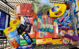 Barb's ShopRite Shopping Trip: $14.48 For Everything  {Over 89% Savings}
