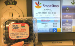 Fresh Blueberries only $0.49 at Stop & Shop {No Coupons Needed}