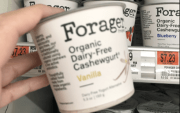 Still Available! Better Than FREE Forager Cashew Yogurt at Acme! {Rebate}