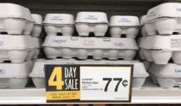 Acme 4 Day Sale: Lucerne Medium 12ct Eggs $0.77! {No Coupons Needed}