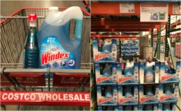 Costco: Hot Deal on Windex Original Glass Cleaner!