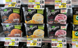 Breyers Ice Cream  as Low as  S1.88 at ShopRite! {No Coupons Needed}