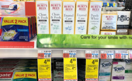UNADVERTISED SPECIAL: Burt's Bees Adult Toothpaste Only $0.49 at CVS!