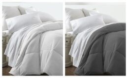 Olive and Twill Micro Down Alternative Comforter Only $28 with Free Shipping - Any Size (reg $120)