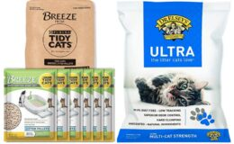 40% Off Select Cat Litter Products at Amazon