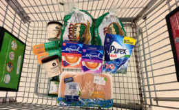 Barb's ShopRite Shopping Trip: $0.69 per item {Over 72% Savings}
