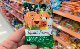 Russell Stover Halloween Singles Just $0.50 at Walgreens!
