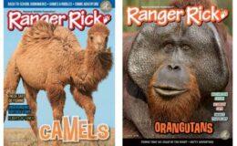 Ranger Rick Magazine For Just $14.99 per Year!