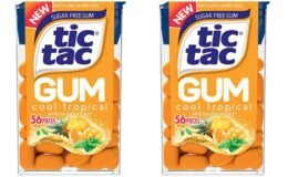 Stock Up Price! Tic Tac Gum, Sugar Free Chewing Gum, Cool Tropical 12 Count