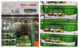 Costco:  Hot Deal on Dannon Activia Probiotic Yogurt - $0.25 per cup!