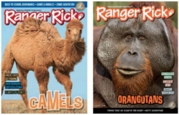 Ranger Rick Magazine For Just $14.99 per Year!